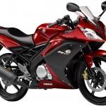 Yamaha R15 Bike